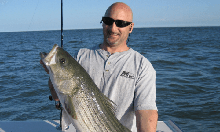 Check out the incredible size of our customer's Block Island stripers before you charter anywhere else.